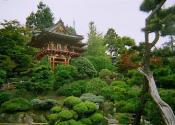 Petersen Company Photography San Francisco Japanese Garden