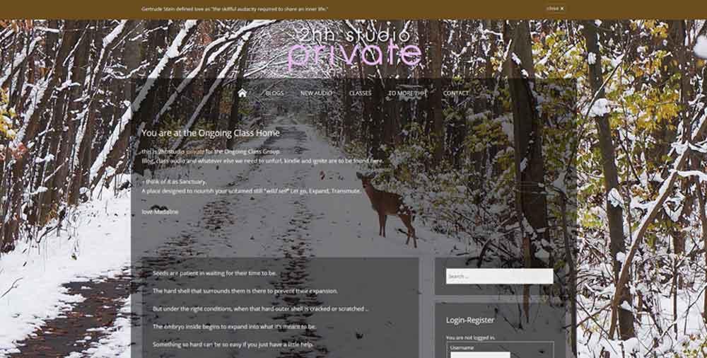 WordPress Samples-2hhstudio Private-Erik Petersen