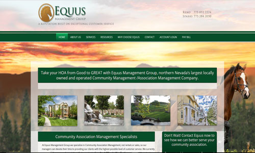 Equus Website Screen Capture
