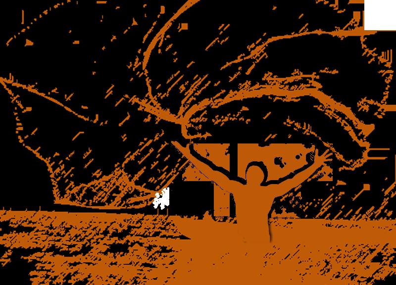 EP Web Design Man Casting Net graphic